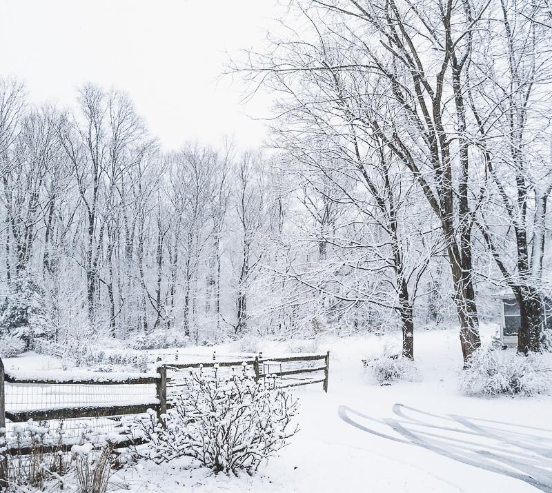 snow last tuesday